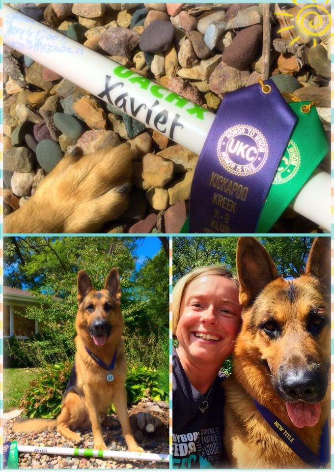 Xavier earned his United Agility Champion Excellent title!!